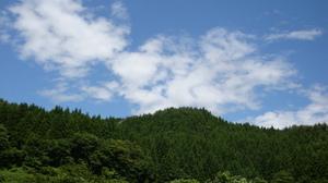 20110705_daiharakeiyaku_006