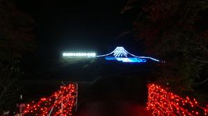 20111101_mizuno_illumination_wood_2