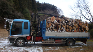 20111231_last_wood_new_northern_b_2