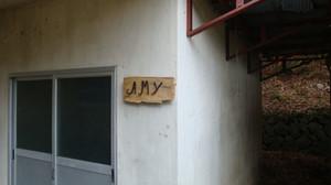 Amy_004
