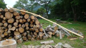 20120619_innerbark_harvesting_043