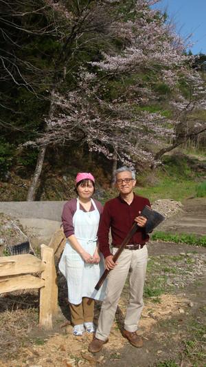 20120424_cherry_blossom_025