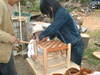 2006pictures_of_clare_spring_cour_5