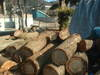 2008_picture_of_the_new_logs_002
