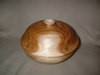 2008_picture_of_the_bowl_with_a_lid