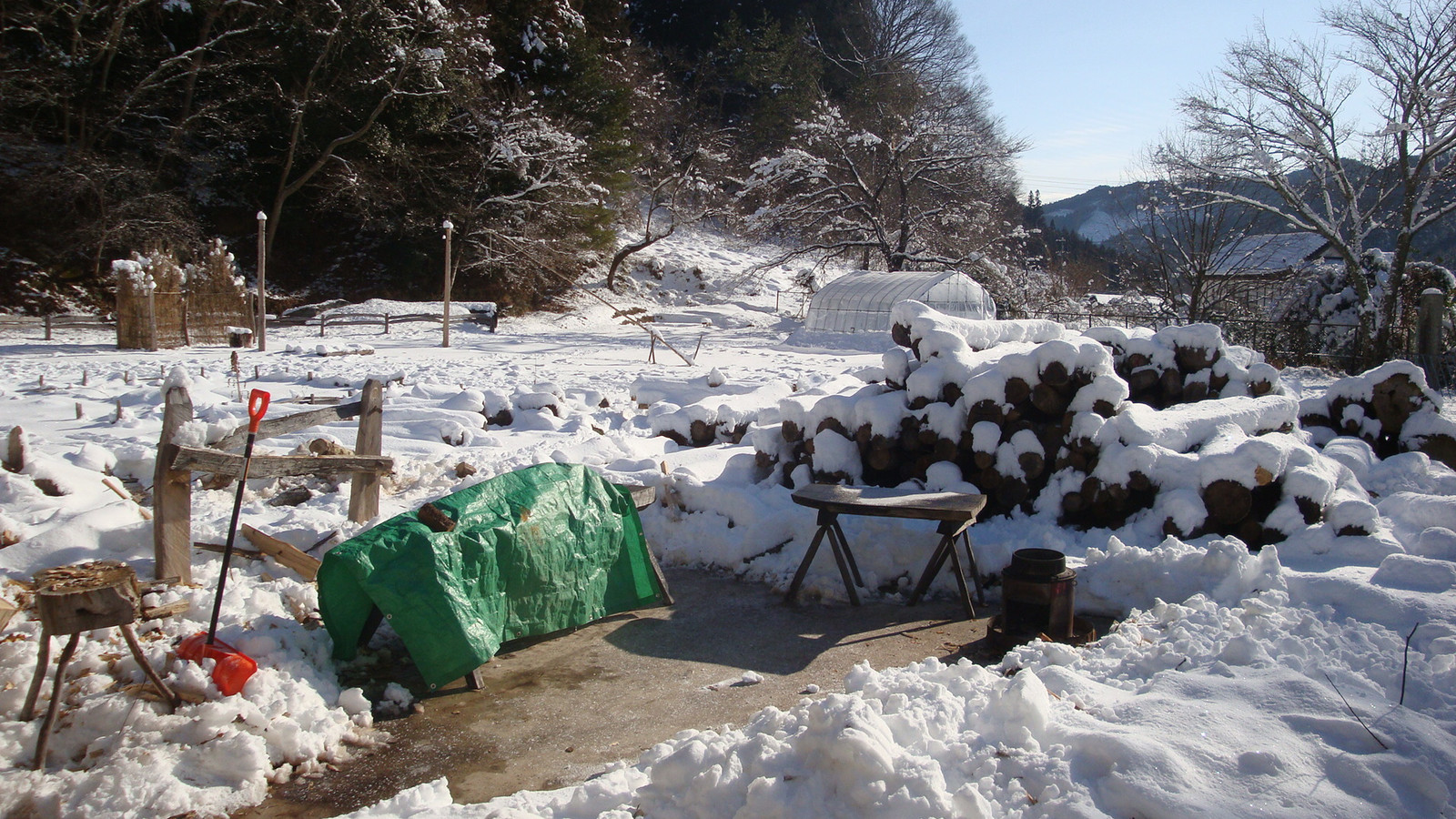 20130123_kouno_koukun_suimokukai_03